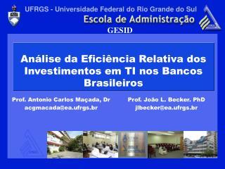 An lise da Efici ncia Relativa dos Investimentos em TI nos Bancos Brasileiros