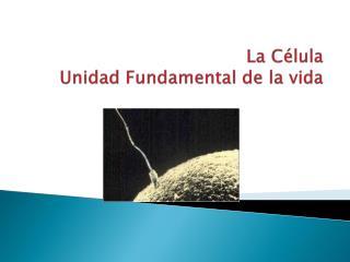 La C lula Unidad Fundamental de la vida
