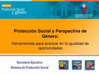 Secretar a Ejecutiva Sistema de Protecci n Social