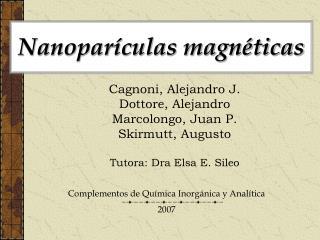 Nanopar culas magn ticas