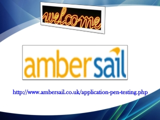 web application penetration testing, application penetratio