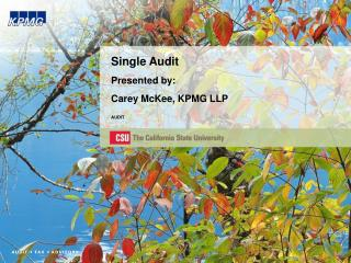 Single Audit Presented by: Carey McKee, KPMG LLP  AUDIT