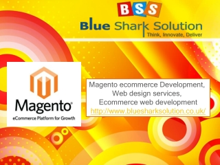 Magento platform for the best web design services