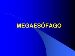 MEGAES FAGO