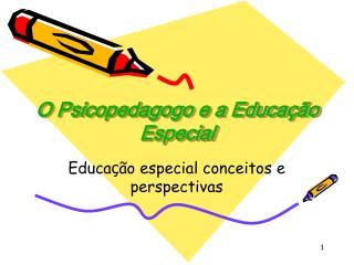 O Psicopedagogo e a Educa  o Especial