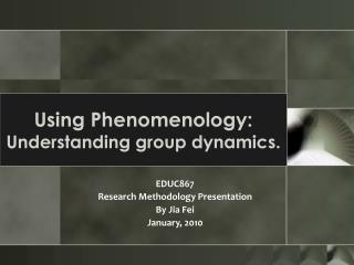 Using Phenomenology:  Understanding group dynamics.