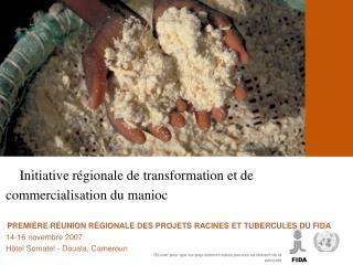 InIInitiative r gionale de transformation et de commercialisation du manioc    PREMI RE R UNION R GIONALE DES PROJETS RA