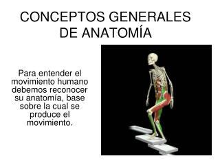CONCEPTOS GENERALES DE ANATOM A