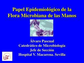 Papel Epidemiol gico de la Flora Microbiana de las Manos