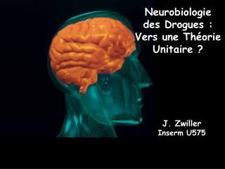 Neurobiologie  des Drogues : Vers une Th orie Unitaire