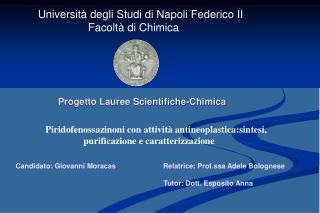 Universit  degli Studi di Napoli Federico II                      Facolt  di Chimica