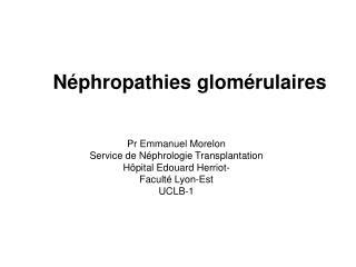 N phropathies glom rulaires