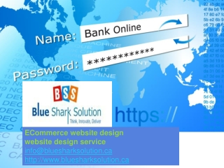 ECommerce website design Winnipeg, SEO services Manitoba