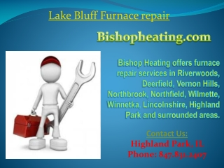 Lake Bluff Furnace repair