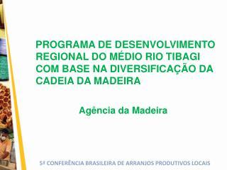 PROGRAMA DE DESENVOLVIMENTO REGIONAL DO M DIO RIO TIBAGI COM BASE NA DIVERSIFICA  O DA CADEIA DA MADEIRA  Ag ncia da Mad