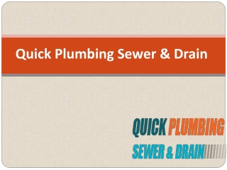 Significance of Reliable and Fast Plumbing Services in Palo