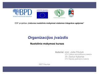 Organizacijos ivaizdis