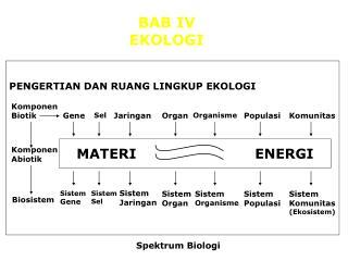 BAB IV  EKOLOGI