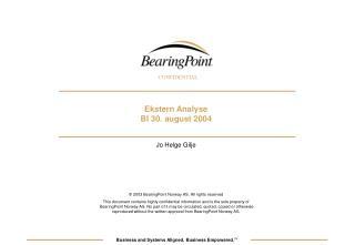 Ekstern Analyse BI 30. august 2004