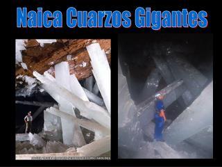 Naica Cuarzos Gigantes