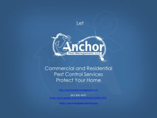 Pest Control in Charleston SC