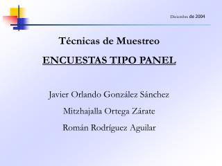 T cnicas de Muestreo ENCUESTAS TIPO PANEL  Javier Orlando Gonz lez S nchez Mitzhajalla Ortega Z rate Rom n Rodr guez Agu