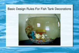 Basic Design Rules For Fish Tank Decorations