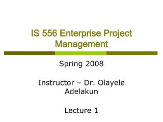 IS 556 Enterprise Project Management