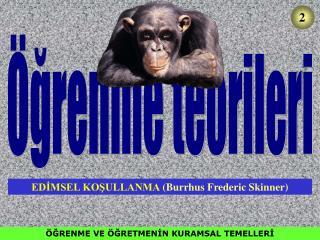 GRENME VE  GRETMENIN KURAMSAL TEMELLERI