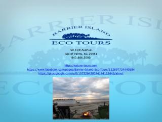 Isle of Palms Fishing
