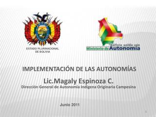 IMPLEMENTACI N DE LAS AUTONOM AS  Lic.Magaly Espinoza C. Direcci n General de Autonom a Ind gena Originaria Campesina