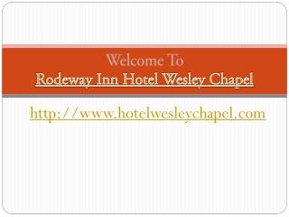 Hotel near wesley chapel fl