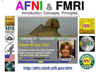 AFNI  FMRI Introduction, Concepts, Principles