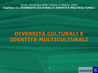 DIVERSIT  CULTURALI E IDENTIT  MULTICULTURALI
