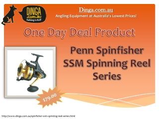 One day deal: Penn Spinfisher SSM Spinning Reel Series
