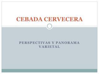 CEBADA CERVECERA