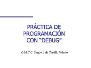 PR CTICA DE PROGRAMACI N CON  DEBUG