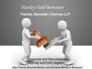 Hartley Bernstein LLP Firm