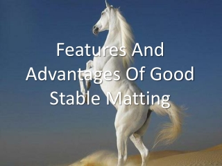 Features and Advantages of Good Stable Matting