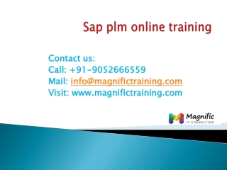 sap plm online training in australia