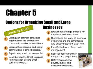 Chapter 5 Options for Organizing Small and Large      Businesses