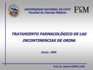 Prof. Dr. Daniel L PEZ LAUR