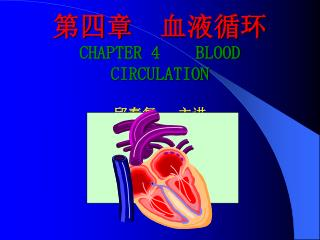 CHAPTER 4    BLOOD CIRCULATION