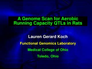 Lauren Gerard Koch Functional Genomics Laboratory Medical College of Ohio Toledo, Ohio