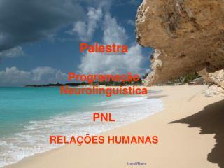 Palestra  Programa  o Neurolingu stica  PNL  RELA  ES HUMANAS