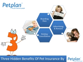 Three hidden benefits of Pet Insurance