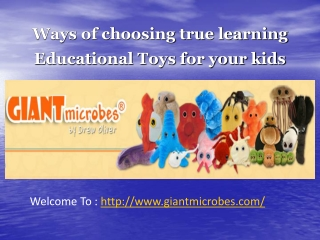 Ways of choosing true learning Educational Toys for your kid