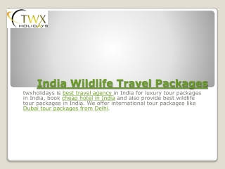 Indian wildlife Travel Packages