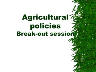 Agricultural policies Break-out session