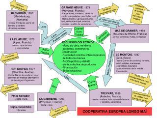 COOPERATIVA EUROPEA LONGO MA
